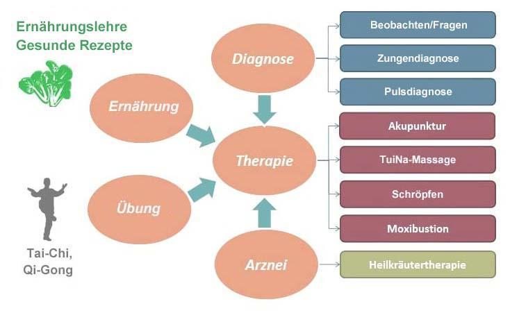 Blähungen | Akupunktur, Chinesische Medizin, TCM, Zürich